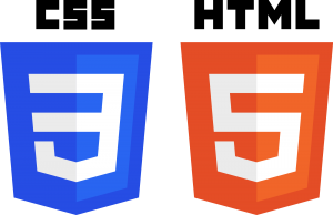 Best web development Company in India Css_html