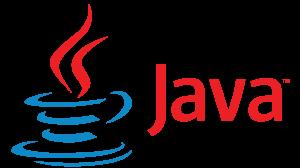 Best web development Company in India java