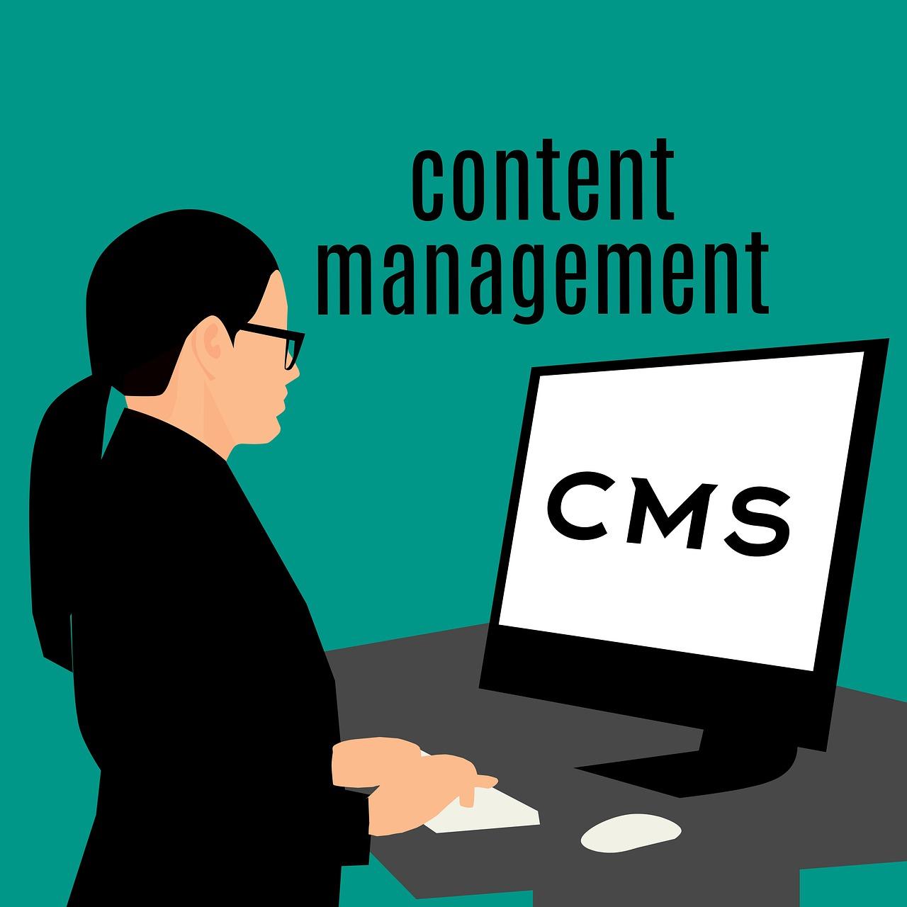 CMS development services need